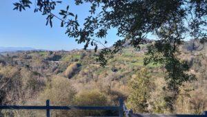 vistas desde la terraza del restaurante Los Llaureses